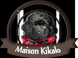 Maison Kikalo